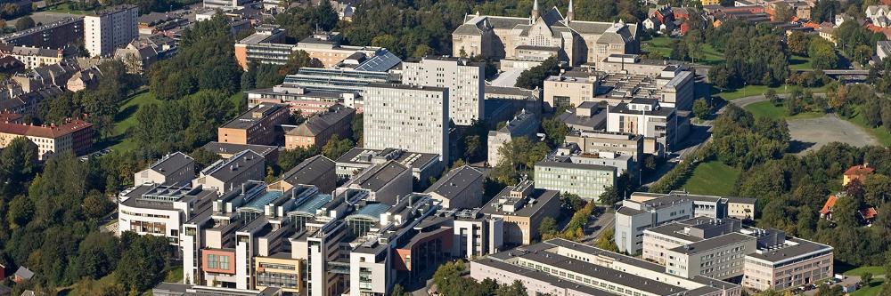 NTNU-campussamling